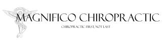Chiro Banner